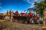 Massey Ferguson 1700 M series compact tractor