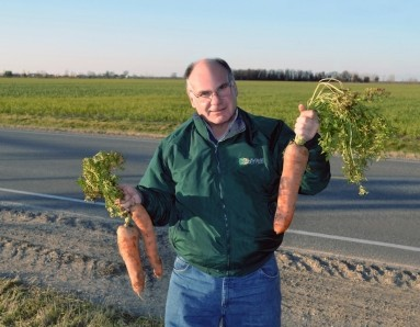 Jim Faivre, president of Faivre Implement, shows off carrots from a Neighbors story about Paul Miller Farms.