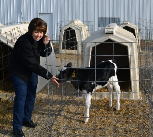 Ruth Johnson, Faivre Implement's marketing director and editor for the dealership's magazine, Neighbors. She's on location for a story about Duckett Holsteins & Genetic Futures.