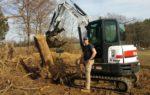 Bobcat_4000_lb_stump.jpg