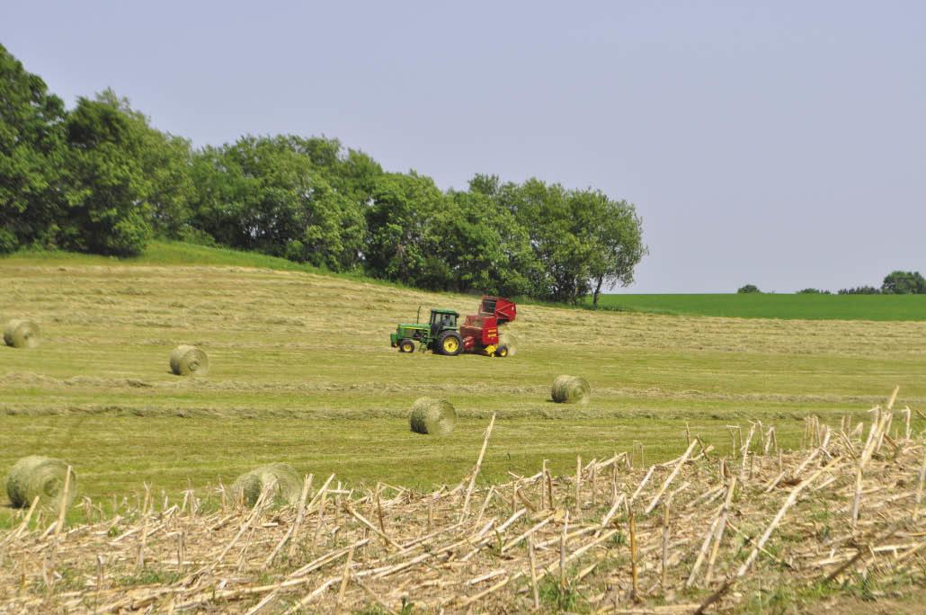 hay baling